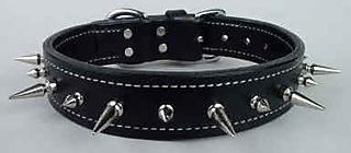 Spiked-dog-collar-spikes